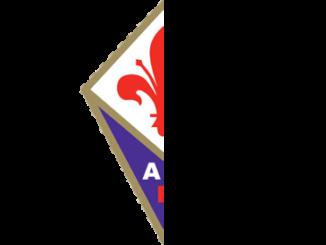 Mezza Fiorentina